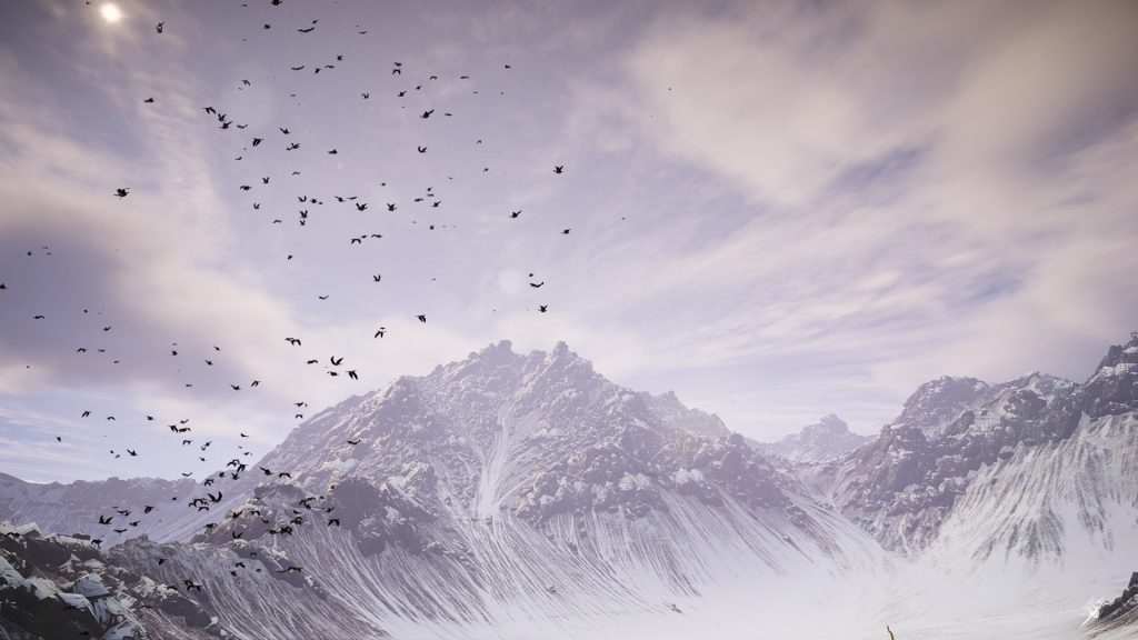 ZeeAlex : Bird Vista