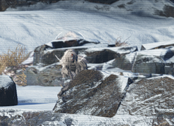 Now is the Time to Hunt Yeti