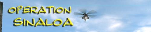 Custom GRAW 2 Co-op Mission